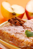 Apple cake with cinnamon Royalty Free Stock Photography
