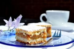 Apple cake, coffee cup, flowers. Royalty Free Stock Image