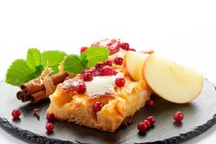 Apple cake with cream, jam and forest berries Stock Photos