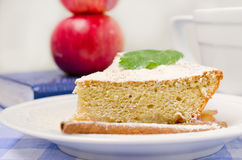 Apple cake. Made ​​from rye flour with cinnamon, powdered sugar and mint stock photography