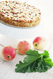 Apple cake with rhubarb stock photo