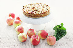 Apple cake with rhubarb Royalty Free Stock Photo