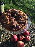 Apple cake in the sun royalty free stock image