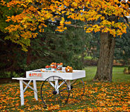 apple cart, fall. Apple cart with produce for sale in an orchard in hunterdon county NJ. tree with fallen autumn leaves under cart Stock Images