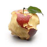 Apple with carved continents. Royalty Free Stock Photos