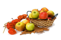 Apple in cestino Fotografia Stock
