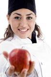 apple chef female fresh professional showing Στοκ εικόνες με δικαίωμα ελεύθερης χρήσης