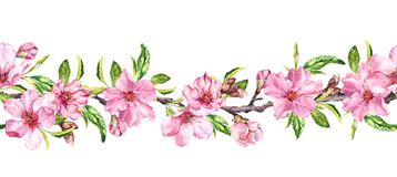 Apple, cherry pink flowers. Seamless floral stripe frame. Botanical watercolour painted border. Apple, cherry pink flowers. Seamless floral stripe frame royalty free illustration