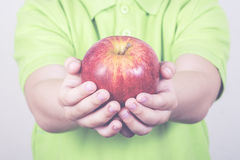 Apple. Child hands with an apple Stock Images