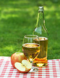 Apple cider and apples Royalty Free Stock Photo
