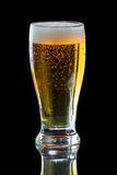 Apple cider, beer. Light beer on a black background served in a chill tall glass royalty free stock photo