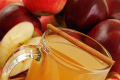 Apple cider and cinnamon Stock Photography