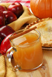 Apple cider with cinnamon Royalty Free Stock Images