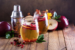 Apple cider cocktail with pomegranate. Apple cider fall cocktail with spices and pomegranate Stock Image