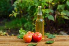 Apple-cider en verse appelen stock foto's