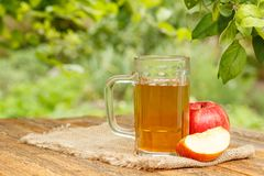 Apple cider in glass goblet and fresh red apples on wooden board. S with apple tree branches and blurred green natural background in daylight. Shellow depth of royalty free stock photos