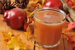 Apple Cider. A glass of apple cider on a harvest setting stock image