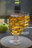 Apple cider with ice cubes Stock Image