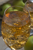 Apple cider with ice cubes Stock Images