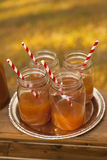 Apple Cider Jars Stock Photography