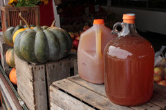 Apple cider jugs Royalty Free Stock Photography