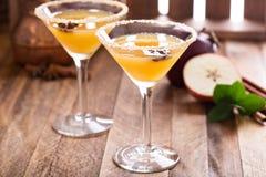 Apple-cider martini met steranijsplant Royalty-vrije Stock Afbeeldingen