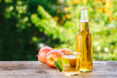 Apple cider outdoor. Apple cider in glass and bottle on wooden table on blurred natural background. Refreshing summer drink Stock Images