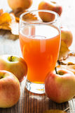 Apple cider ready to drink and ripe organic apples Royalty Free Stock Photo