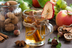 Apple cider with spices in glass mug Stock Image