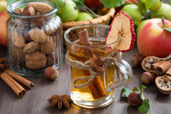 Apple cider with spices in glass mug, horizontal Royalty Free Stock Photography