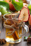 Apple cider with spices in glass mug, vertical Royalty Free Stock Image