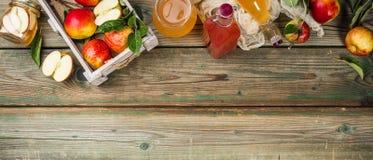 Apple cider vinegar and fresh apples stock image