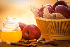 Apple cider vinegar Royalty Free Stock Photo