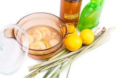 Apple cider vinegar, lemon, lemongrass effective insect repelle. Apple cider vinegar, lemon and lemongrass home remedy, safe and effective formula to repel stock images