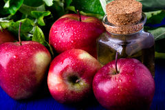 Apple cider vinegar. One glass bottle on blue background. Red apples. Stock Images