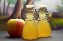 Apple-cider vinegret Stock Foto's