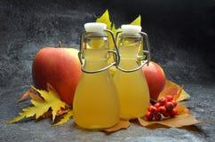 Apple-cider vinegret Royalty-vrije Stock Foto's