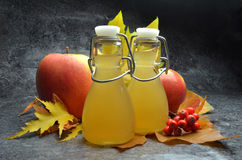 Apple cider vinegret. A fresh  polish Apple cider vinegret Royalty Free Stock Photos