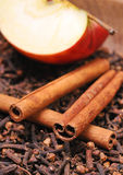 Apple &cinnamon Stock Photography