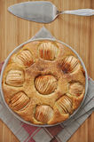 Apple Cinnamon Cake. On a plate royalty free stock images