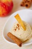 Apple cinnamon ice cream Stock Images