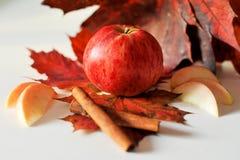 Apple cinnamon maple. Autumn still life of apples and maple cinnamon Stock Photo