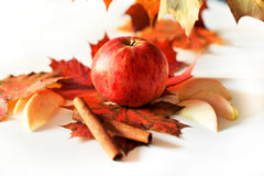 Apple cinnamon maple. Autumn still life of apples and maple cinnamon Royalty Free Stock Photos