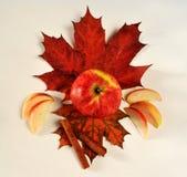 Apple cinnamon maple. Autumn still life of apples and maple cinnamon Royalty Free Stock Images