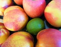 Apple citron och persikor fotografering för bildbyråer