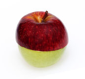 Apple clone. Two apple halves one red and one green joined together against a white background stock images