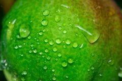 Apple close-up drops stock images