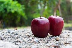 Apple. The close-up of ripe apple Stock Photo