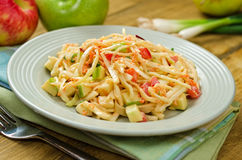 Apple Coleslaw. A delicious plate of creamy apple coleslaw with shredded cabbage, green onion, carrot, and apples Stock Photos