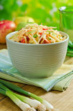 Apple Coleslaw. A delicious bowl of creamy apple coleslaw with shredded cabbage, green onion, carrot, and apples Stock Image